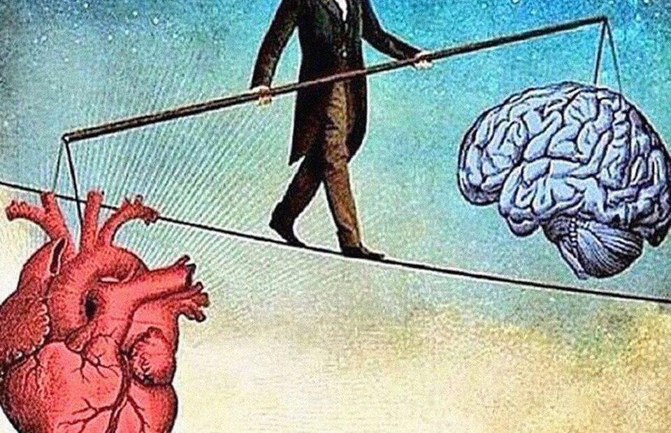 Ана Галић: Ко слуша интелектуалце још?